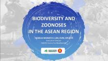 Biodiversity and Zoonosis