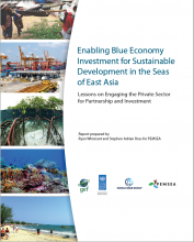 Enabling Blue Economy Investment for Sustainable Development in the Seas of East Asia
